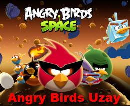 Angry Birds Uzay
