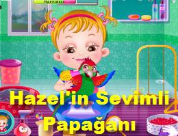 Hazel'in Sevimli Papağanı