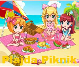 Plajda Piknik