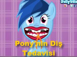 Pony'nin Diş Tedavisi