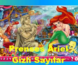 Prenses Ariel Gizli Sayılar