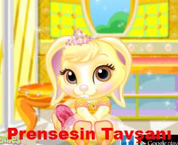 Prensesin Tavşanı