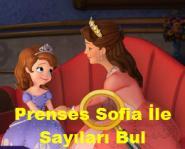 Prenses Sofia İle Sayıları Bul