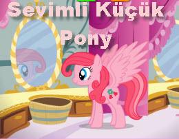Sevimli Küçük Pony