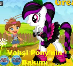 Vahşi Pony'nin Bakımı